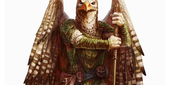 Aarakocra (Circle of Air, Storm Lord, Oath of the Winds, Infiltrator)