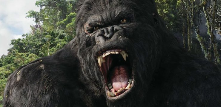 Monsters & Traps for a D&D 5e Jungle Adventure