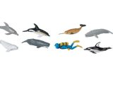 Whales and Dolphins Set