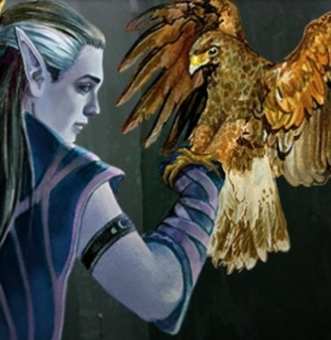 Unearthed Arcana: Druid Circles and Wild Shape Breakdown