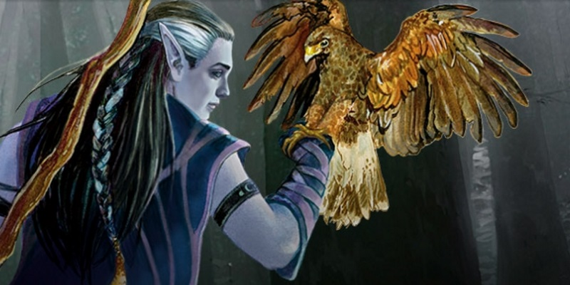 Unearthed Arcana: Druid Circles and Wild Shape Breakdown - Tribality