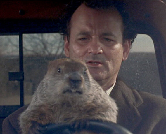 groundhog day still