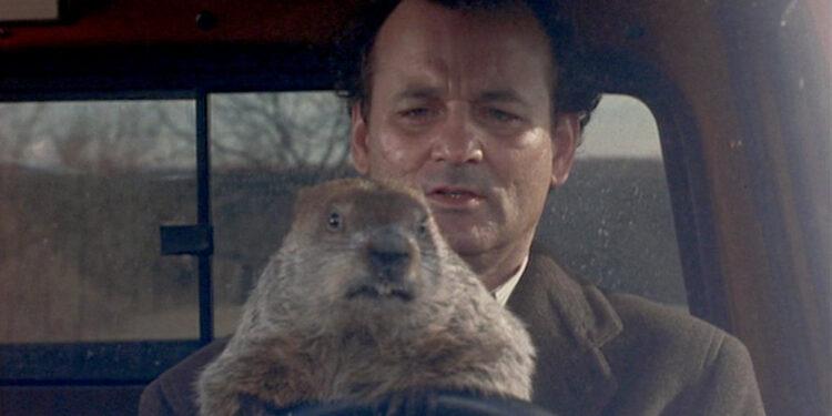 groundhog day still